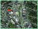 Glen Burnie Town Center thumbnail links to property page